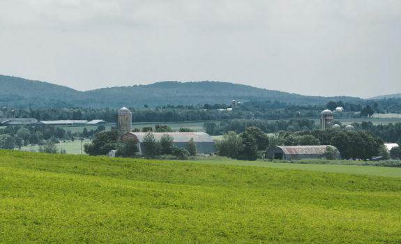 paysage_secteur_rural_